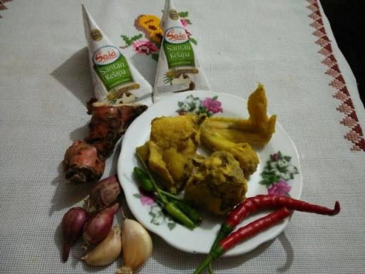 Bahan Opor Ayam Kuning