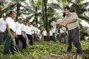 Asian Agri Siapkan Bibit Topaz