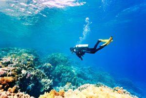 Olahraga Menyelam atau Diving